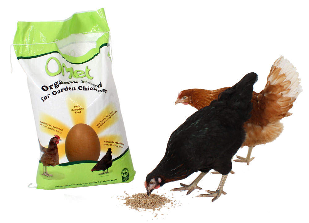 Chickens love the organic Omlet Chicken Feed