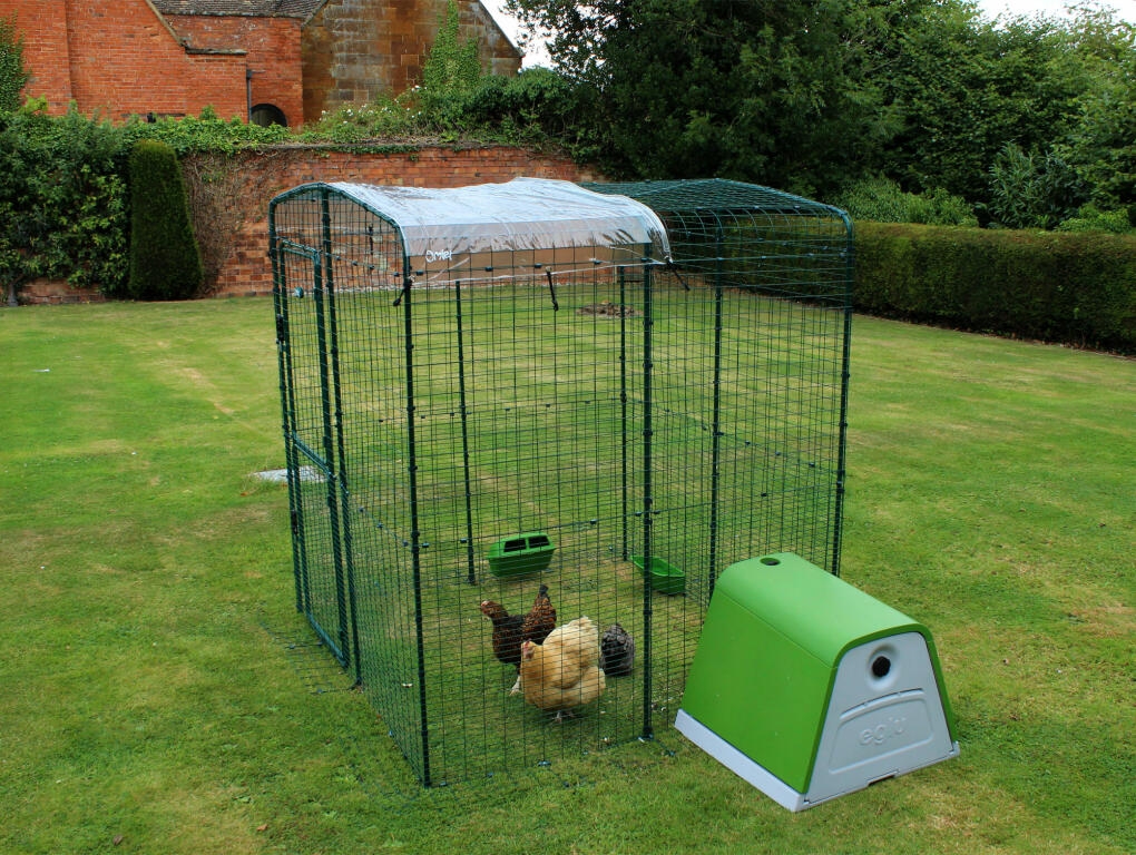 This Clear Cover will keep chickens dry whilst letting in sunlight