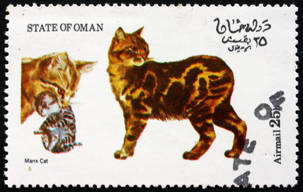 Manx Cats – Bit-O-WY Horses  |Manx Cat History