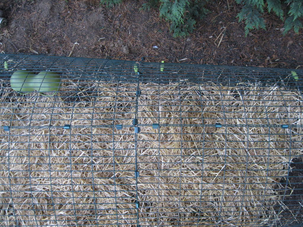 Run Clips Pack Of 90 Chicken Runs Netting Learn More At Electricfenceonlinecouk Coops Walk In Fencing And Omlet