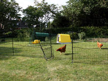 Omlet Chicken Fencing - 21 metres - Inc. Gate and Double Spike Poles and Guy Lines