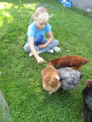 Rebecca with hens