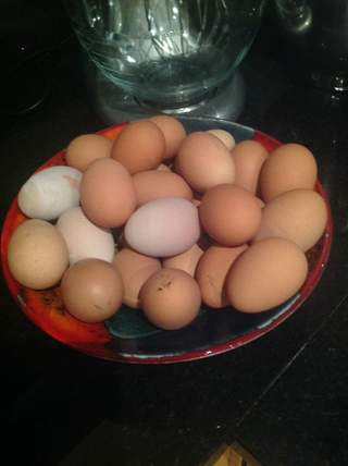 These eggs were laid by two chickens in two weeks