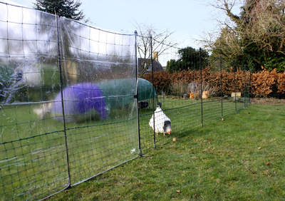 Clear Wind Break Kit for Chicken Fencing