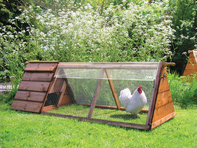 Clear Cover for Chicken Run - 1.5m x 0.9m