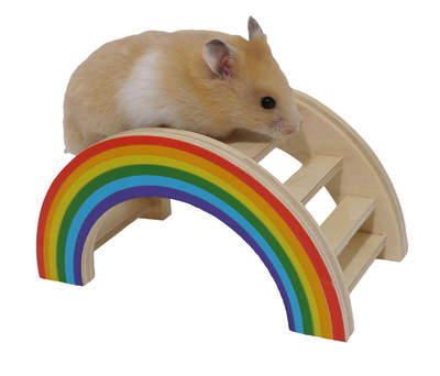 Rainbow Play Bridge for Small Animals