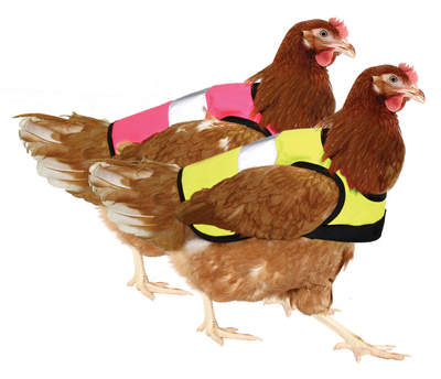 Yellow and Pink High-Vis Chicken Jacket Twin Pack