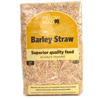 Pillow Wad Mini-Bale Barley Straw Large 2kg