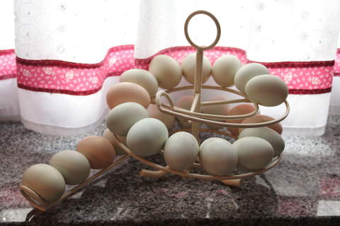 great egg skelter