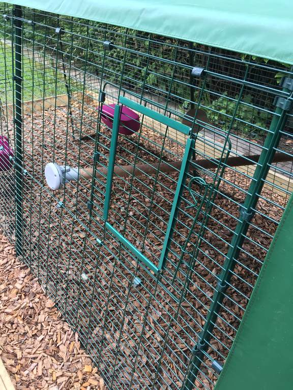 Run Door Self Fit Kit Chicken Runs Chicken Netting Chicken