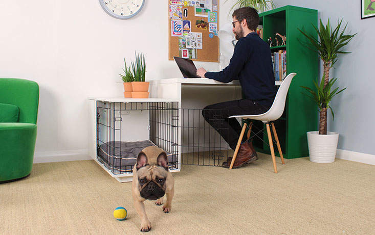 The second door on the end allows your Fido Studio into any space