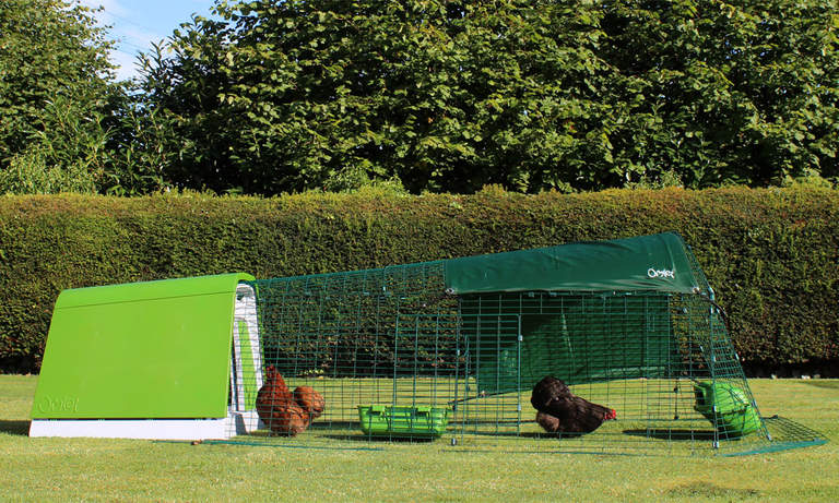 The Leaf Green Eglu Go Chicken Coop will look great in your garden