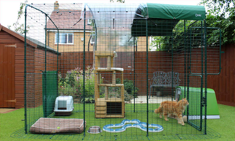Outdoor Cat Run Large Spacious Outdoor Cat Enclosure