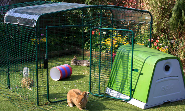The lo-rise rabbit run offers lots of floor space for your pet bunnies