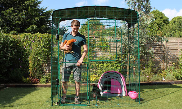2x2x2 Walk in Chicken Run - Eglu Classic Chicken Coop inside and man holding chicken in stable door