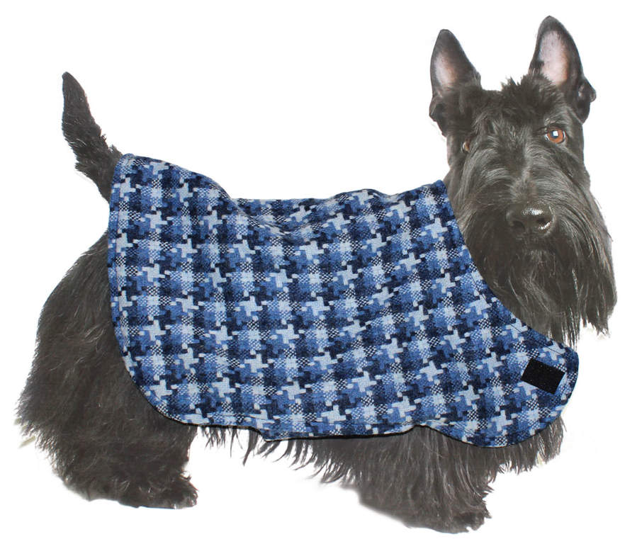 Our cardboard Scottish Terrier loves this jacket!