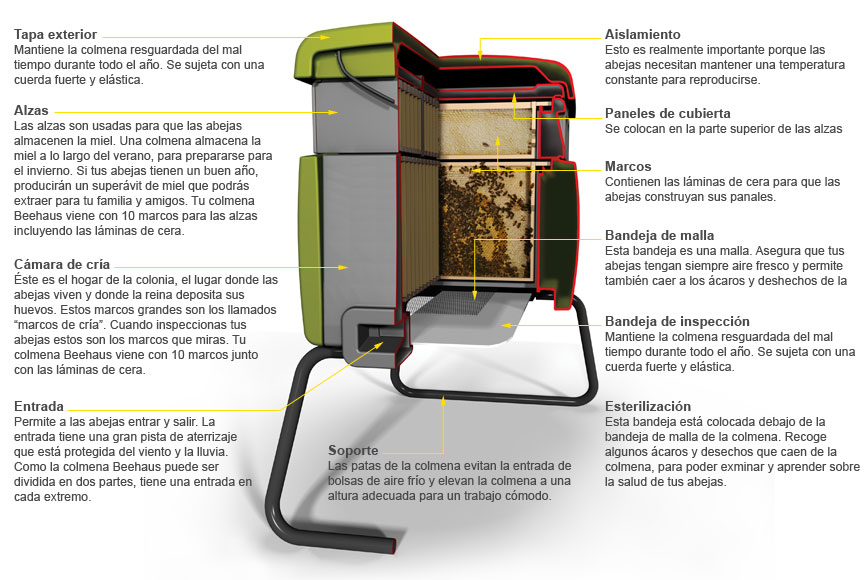 Colmena Beehaus - Apilarouco - Apicola Serra do Larouco