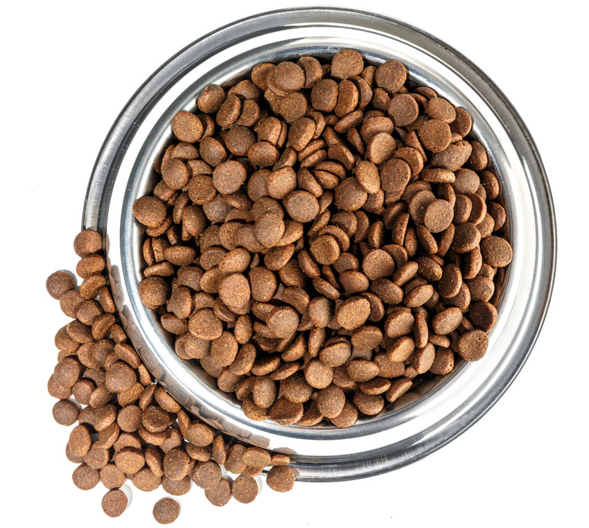 What Is A Good Dry Dog Food Uk