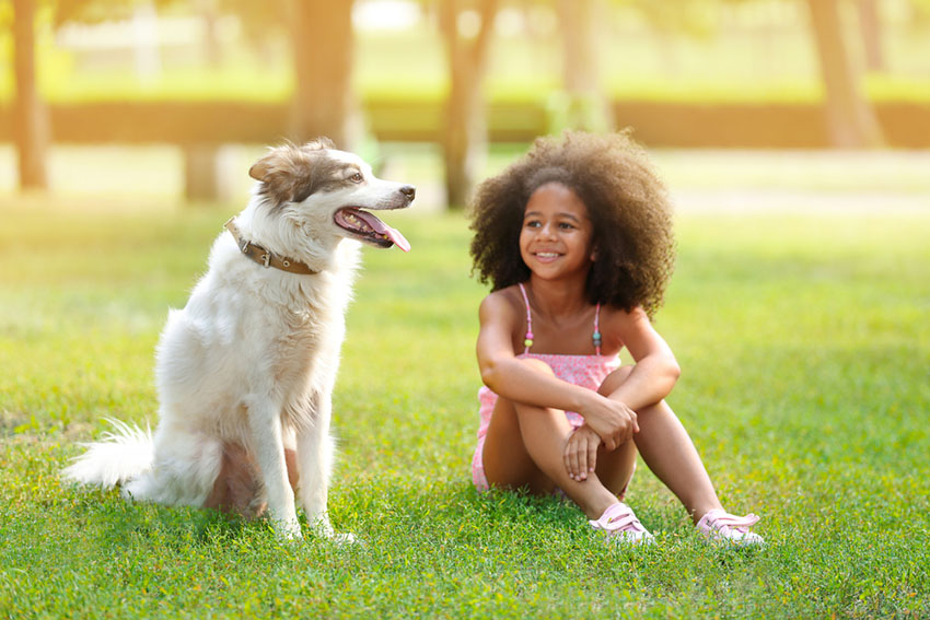 Dog with girl in park
