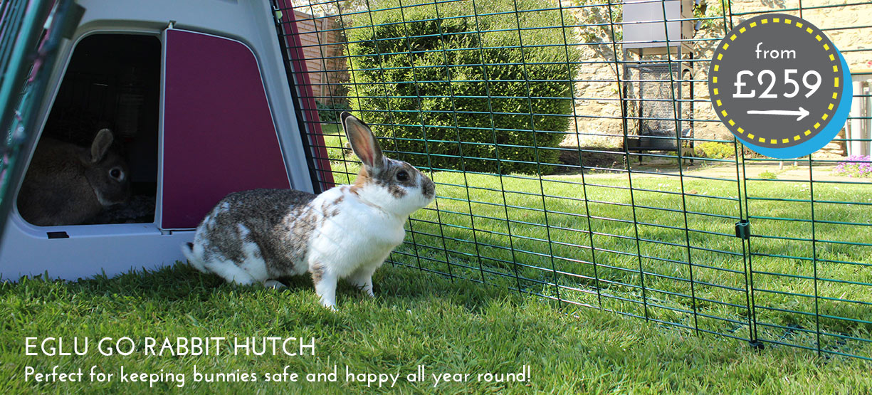 The Eglu Go Rabbit Hutch is perfect for keeping bunnies safe and happy all year round