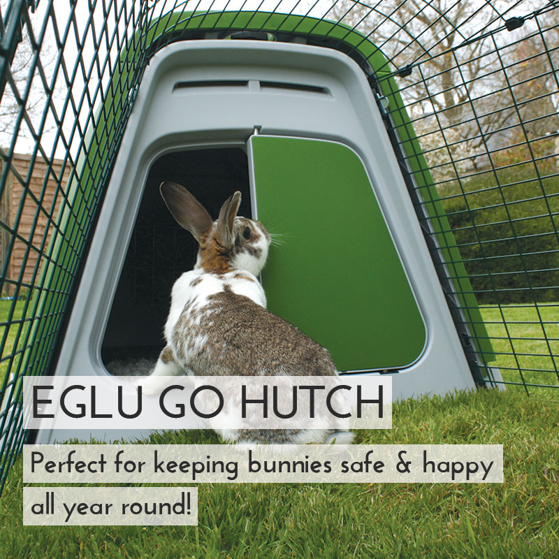 Main Eglu Go Rabbit Hutch Mobile UK
