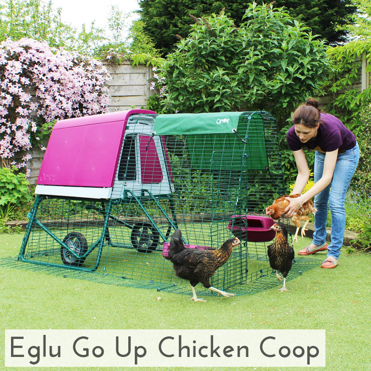 Girl beside Eglu Go Up chicken house for 4 hens