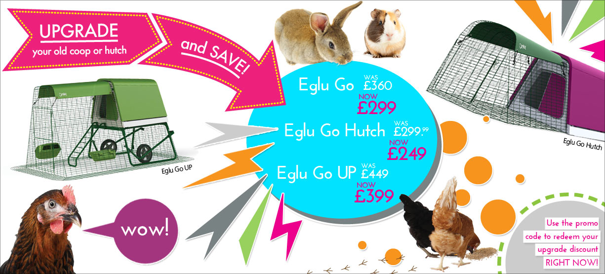 Eglu Upgrade And Save Scheme Jan 2016 Homepage Image Full UK