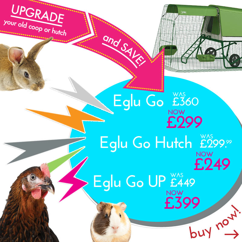 Eglu Upgrade And Save Scheme Jan 2016 Homepage Image Mobile UK