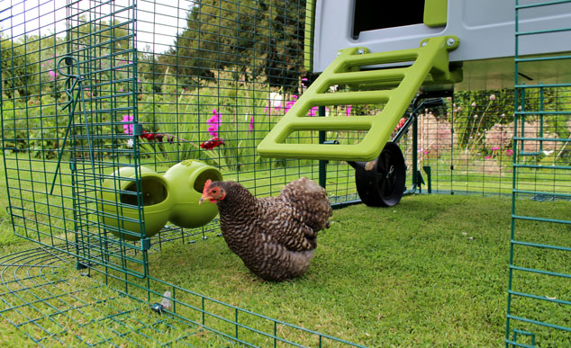 Eglu Cube chicken house in garden with run.