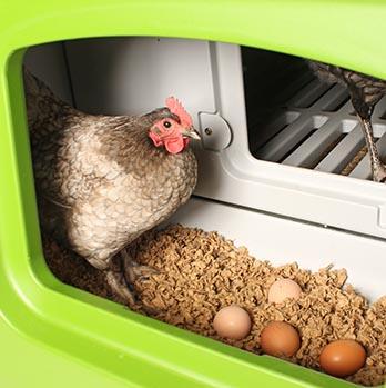 Seitliche Tür zur Eierentnahme.