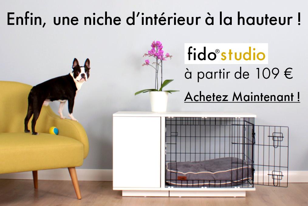 Découvrez la niche d'intérieur Fido Studio