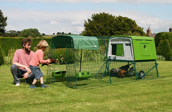 Add run extensions to your Eglu Cube to give your hens more space