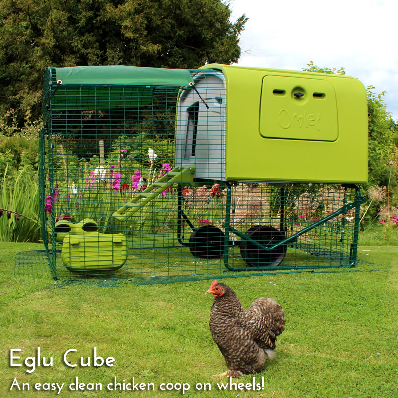 UK New Year Eglu Cube Homepage Main Mobile