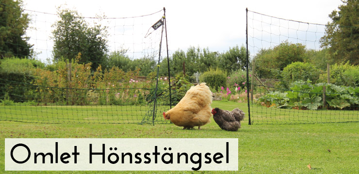 Omlet Chicken Fencing with gate