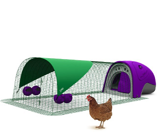 Eglu Classic Chicken house