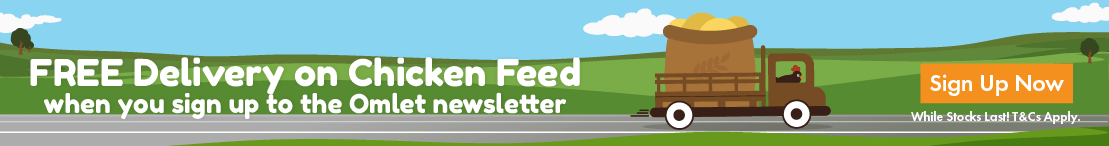 Chicken Feed Promo Banner