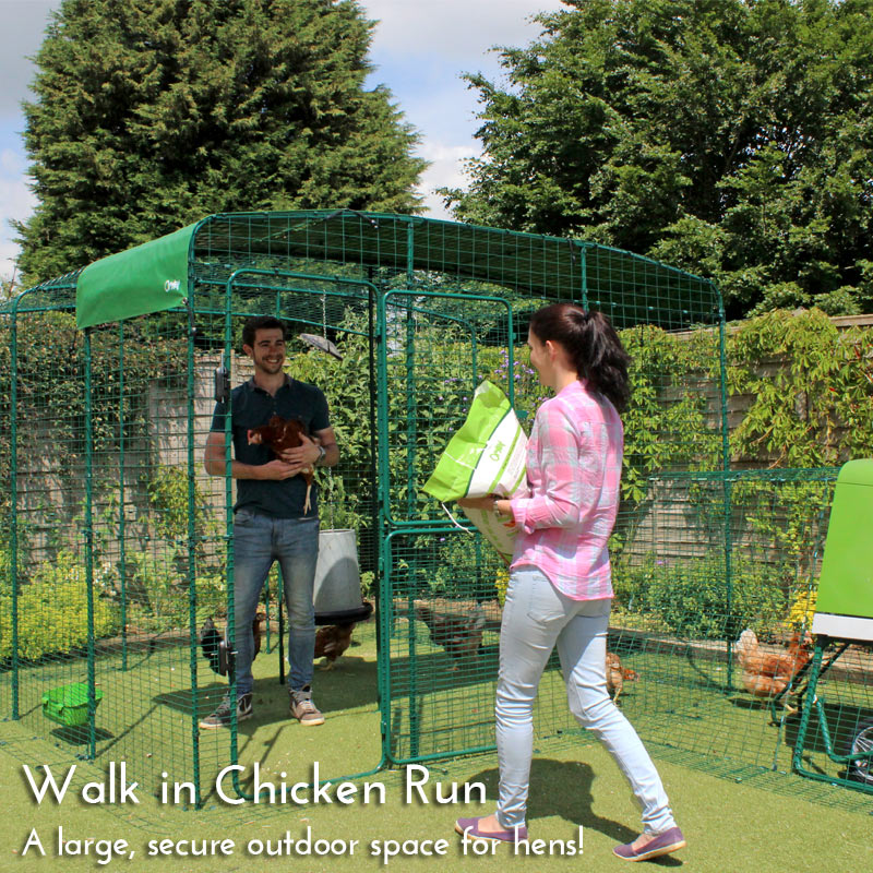 UK Walk in Chicken Run Homepage Mobile