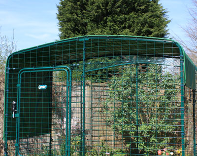 Your guinea pigs will be sheltered in their enclosure with a Heavy Duty Roof Cover.