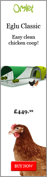The easy clean chicken coop
