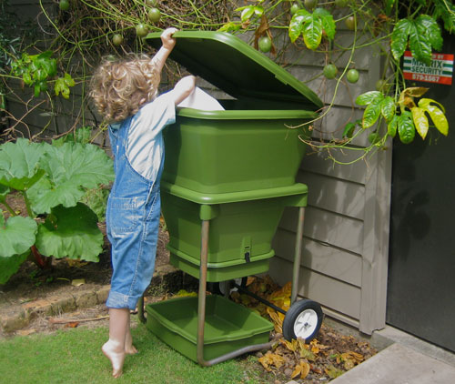 Daily Care For Your Worms Worm Care Worm Composting