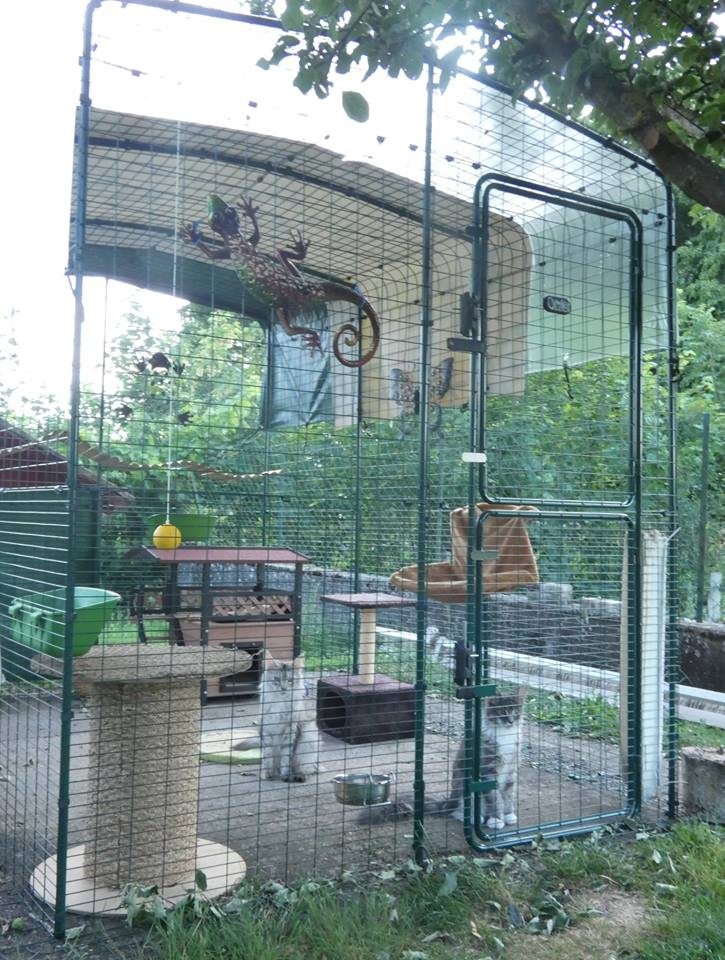Outdoor Cat Run | Large Spacious Outdoor Cat Enclosure