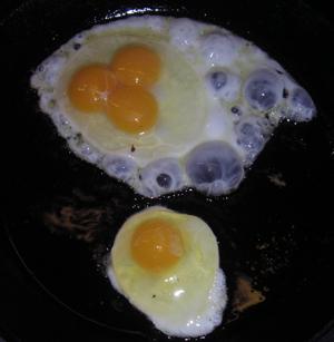Judy got a triple egg!