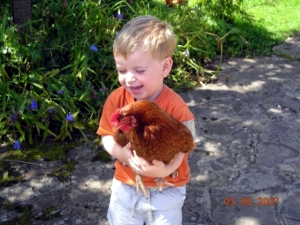 Tickling Chickens