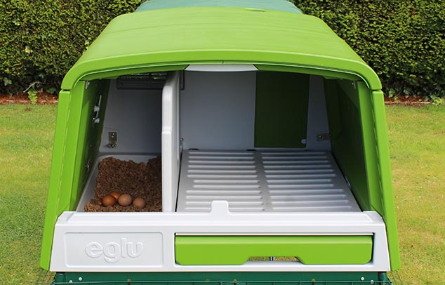 L'intérieur spacieux du poulailler Eglu Cube avec son nichoir et pondoir pouvant accueillir jusqu'à 10 poules
