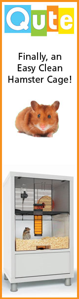 Finally, an Easy-Clean Hamster Cage