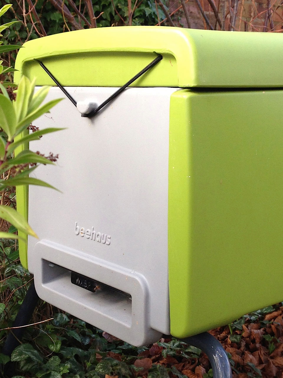 Beehaus Modern Plastic Beehive For Easy Beekeeping Learn More At Electricfenceonlinecouk Http Girlmeetsbeeblogspotcouk